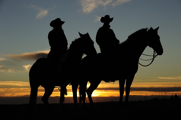 Sunset silhouette at Historic Reesor Ranch.