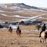 Horse Adventure in the spring at Historic Reesor Ranch.