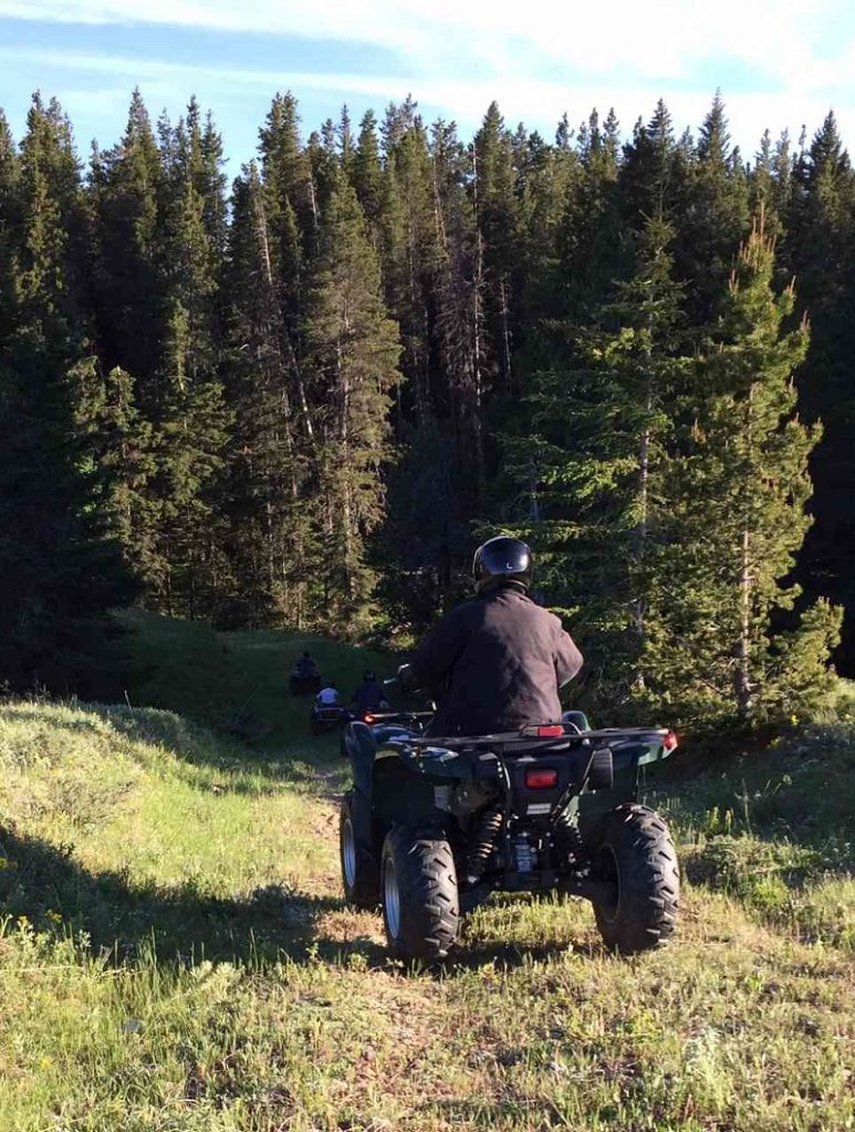 ATV Guided Tour into forest at Historic Reesor Ranch.