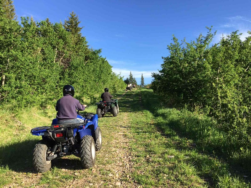 ATV Guided Tour on diverse terrain at Historic Reesor Ranch.