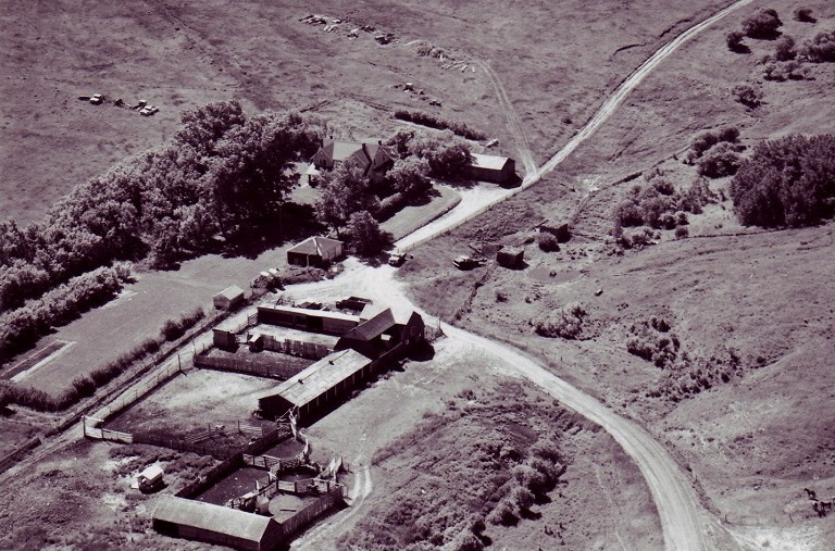 Reesor Ranch yard 1950s with 5 designated heritage buildings.