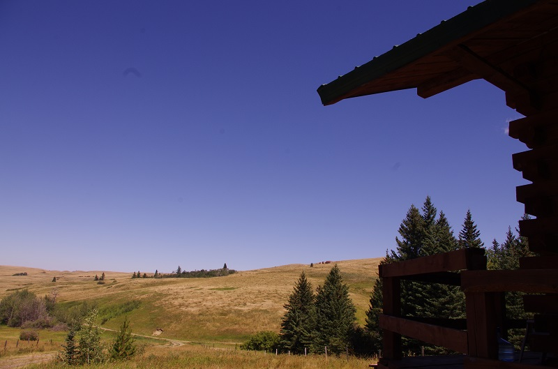 Log Cabin view point at Historic Reesor Ranch.
