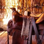 Saddle in the tack room at Historic Reesor Ranch