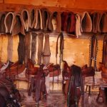 Wranglers at Historic Reesor Ranch take pride in keeping the tack room tidy!