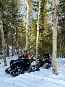 Winter ATVs in poplars