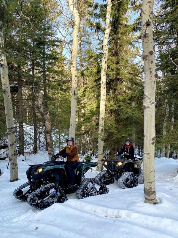Winter ATVs in poplars